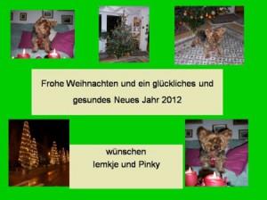 PinkyWeihnachten2011
