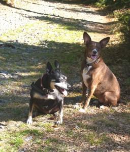 Sacha und Gina