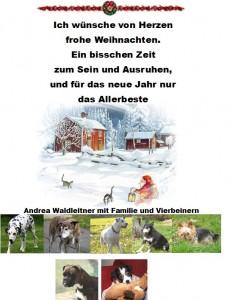 Weihnachtsgruss1