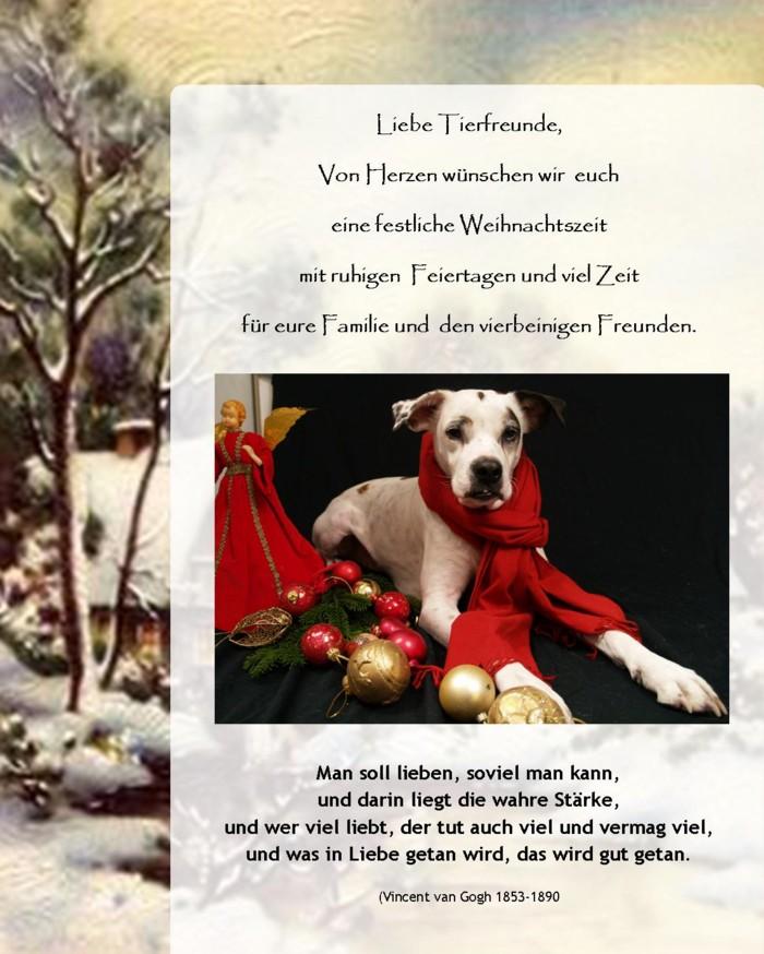 Weihnachtsgruss2013