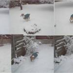 Winterlächeln4
