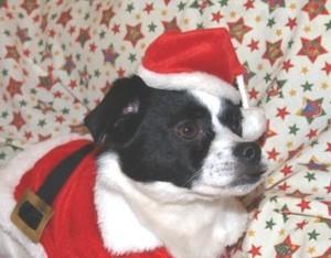 Gertrud Weihnachten