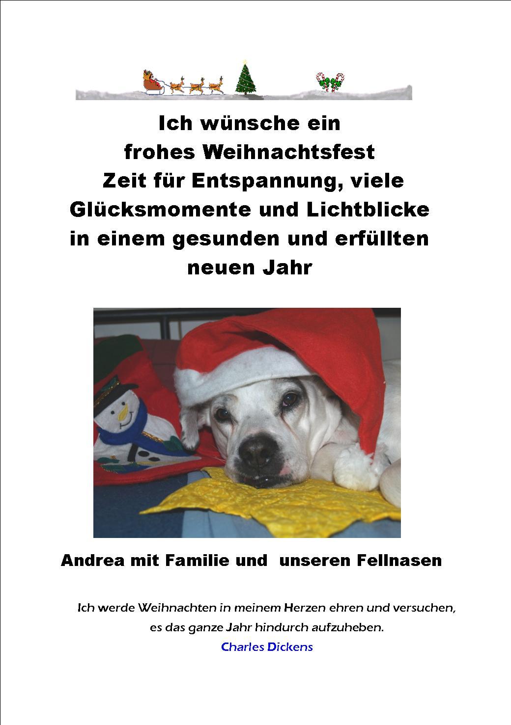 vermittelt 2015 / Weihnachtspost   Die Waldis